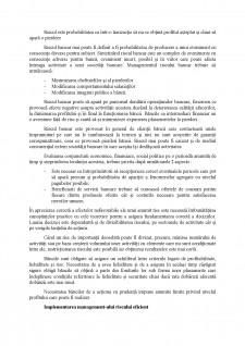 Gestiune bancară - Pagina 5