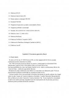 Fundamentarea strategiei de dezvoltare a firmei SC Mib Prodcom SRL - Pagina 3