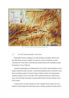 Funcționalitatea regională a sistemului urban Valea Jiullui - Pagina 3