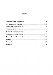 Analiza activității de marketing strategic pentru compania LIDL - Pagina 2