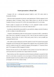 Analiza activității de marketing strategic pentru compania LIDL - Pagina 4