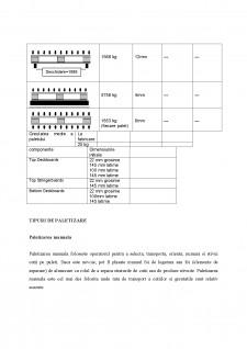Paletizarea - Pagina 3