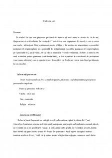 Studiu de caz - Pagina 2
