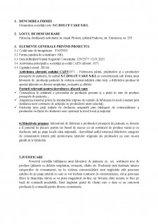 Plan de afaceri SC Dolce Cake SRL - Pagina 2