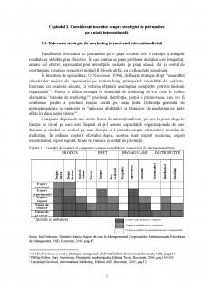 Strategia de pătrundere pe o piață internațională în cadrul Bitdefender SRL - Pagina 5