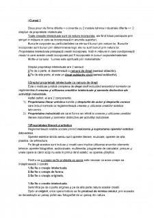 Dreptul proprietații intelectuale - Pagina 1