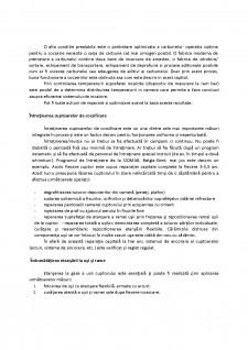Raționalizarea consumului de cocs la elaborarea fontei în furnal - Pagina 4
