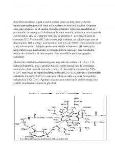 Vitamina B12 - Pagina 3