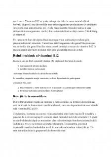 Vitamina B12 - Pagina 5
