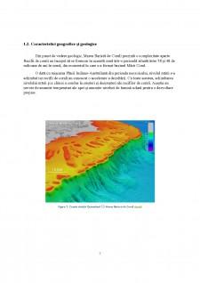 Biodiversitatea insulelor coraligene - Marea Barieră de Corali - Pagina 4