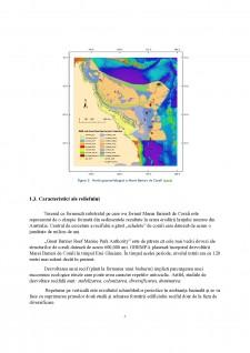 Biodiversitatea insulelor coraligene - Marea Barieră de Corali - Pagina 5