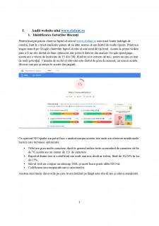 Strategia de promovare online a site-ului www.elefant.ro - Pagina 2