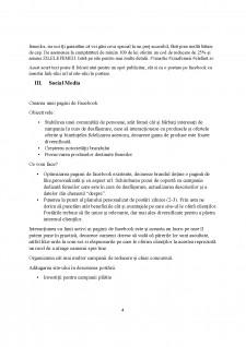 Strategia de promovare online a site-ului www.elefant.ro - Pagina 5