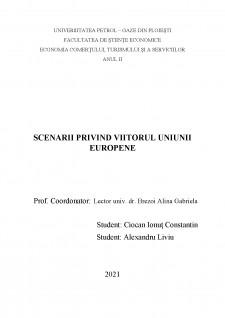 Scenarii privind viitorul Uniunii Europene - Pagina 1