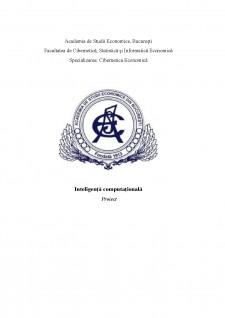 Inteligență Computațională - Pagina 1