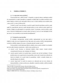 Acțiunea normei juridice în timp, în spațiu și asupra persoanei - Pagina 4