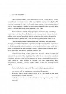 Cultura organizațională - Pagina 2