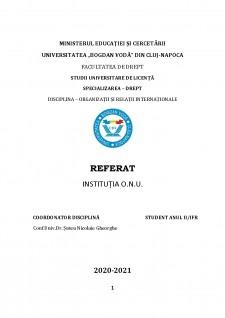 Instituția O.N.U. - Pagina 1