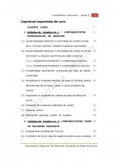 Contabilitate financiară aplicată - Pagina 3