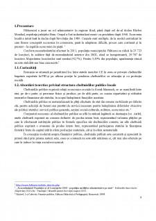 Analiza privind starea și evoluția cheltuielilor publice locale ale primăriei Fălticeni în parioada 2015-2017 - Pagina 3