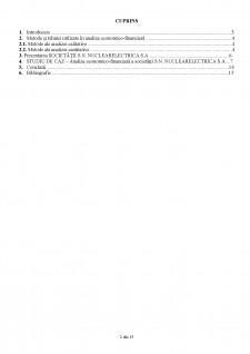 Management economico-financiar analiza economico-financiară SN NuclearElectrica SA - Pagina 2