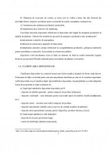 Depozitarea mărfurilor - Pagina 5