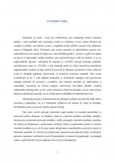 Principiul prevenirii - Pagina 3