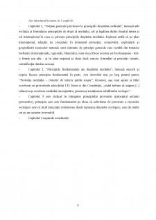 Principiul prevenirii - Pagina 4