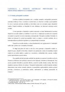 Principiul prevenirii - Pagina 5
