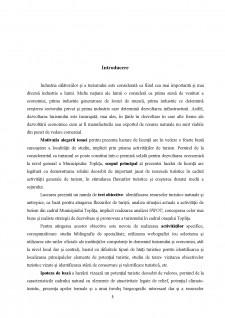 Potențialul turistic și perspective de dezvoltare ale Municipiului Toplița - Pagina 5