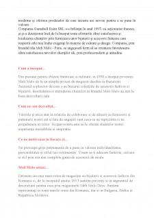 Studiu privind conducerea și organizarea unei afaceri în sistem franciză în C.T.S.O Meli Melo - Pagina 3