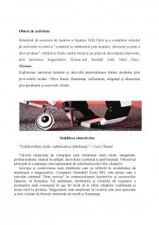 Studiu privind conducerea și organizarea unei afaceri în sistem franciză în C.T.S.O Meli Melo - Pagina 4