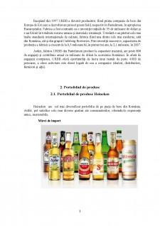Analiză comparativă Heineken vs URBB - Pagina 3