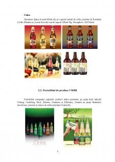 Analiză comparativă Heineken vs URBB - Pagina 5