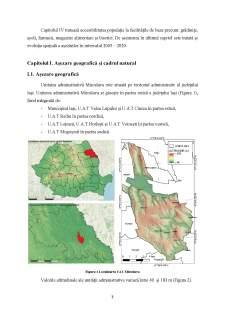 Evoluția spațială și demografică a UAT Miroslava - Pagina 4