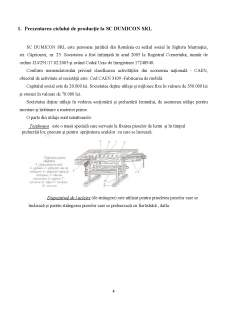 Contabilitate managerială SC Dumicon SRL - Pagina 4
