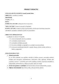 Proiect didactic - ocupații, meserii, profesii - Pagina 1