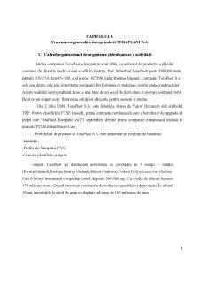 Analiza structurii companie Teraplast SA - Pagina 3