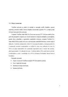 Analiza structurii companie Teraplast SA - Pagina 5