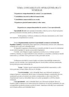 Contabilitate operațiunilor cu numerar - Pagina 1