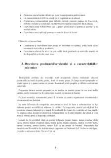 Plan de Afaceri - Restaurant - Pagina 5
