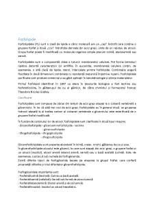 Fosfolipide și glicolipide - Pagina 2