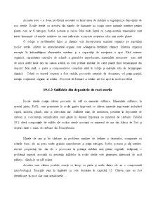 Chimia Deșeurilor Solide - Pagina 4