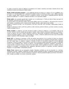 Analiza Economico-Financiara - Pagina 4