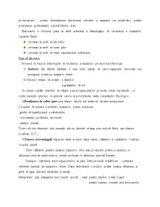 Enzimele - Pagina 5