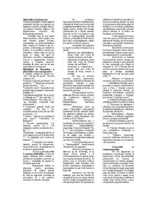 Negociere Comerciala Internationala - Pagina 5