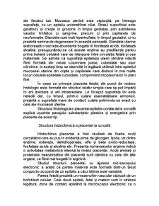 Placenta la Scroafă - Pagina 3