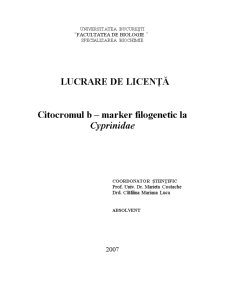 Citocromul B - Marker Filogenetic la Cyprinidae - Pagina 1