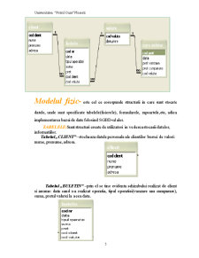 Proiect Access - Pagina 5