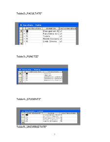 Modul Microsoft Access - Pagina 5